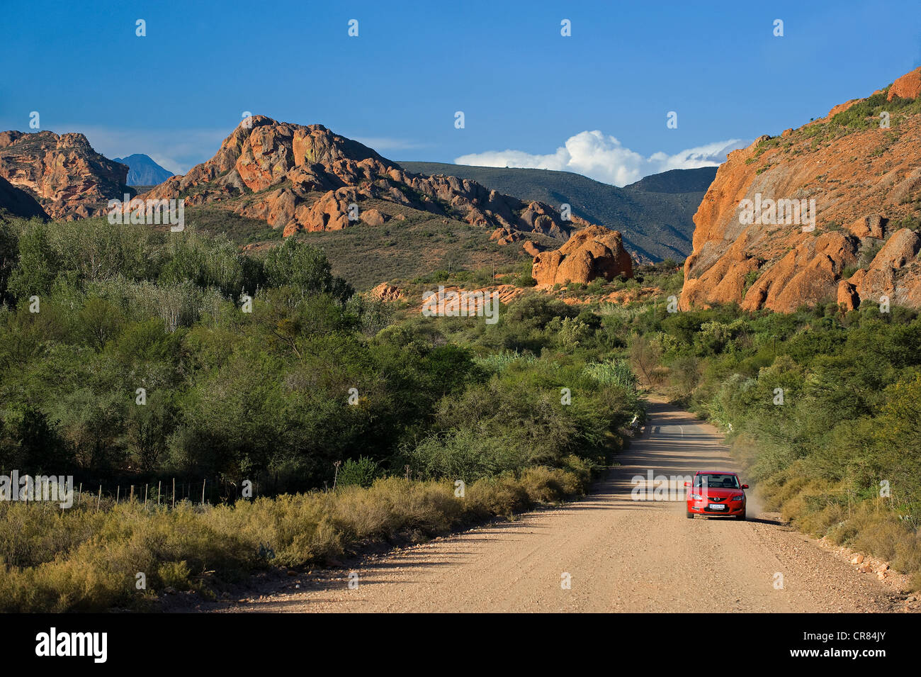South Africa, Western Cape, Route 62, Garden Route, Little Karoo, Red Hills