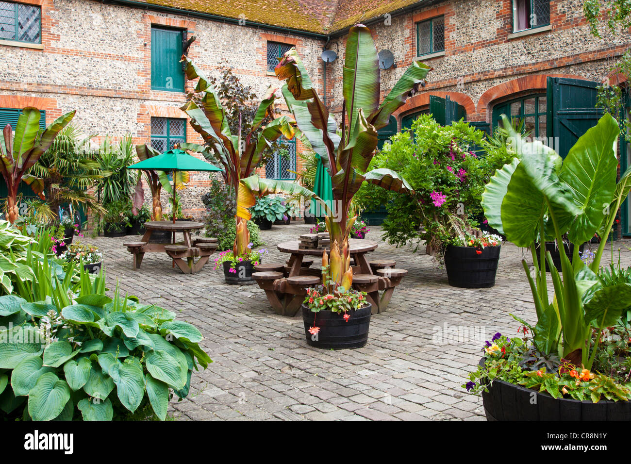 A courtyard garden with containers of exotic tropical plants in Stock Royalty Free Image