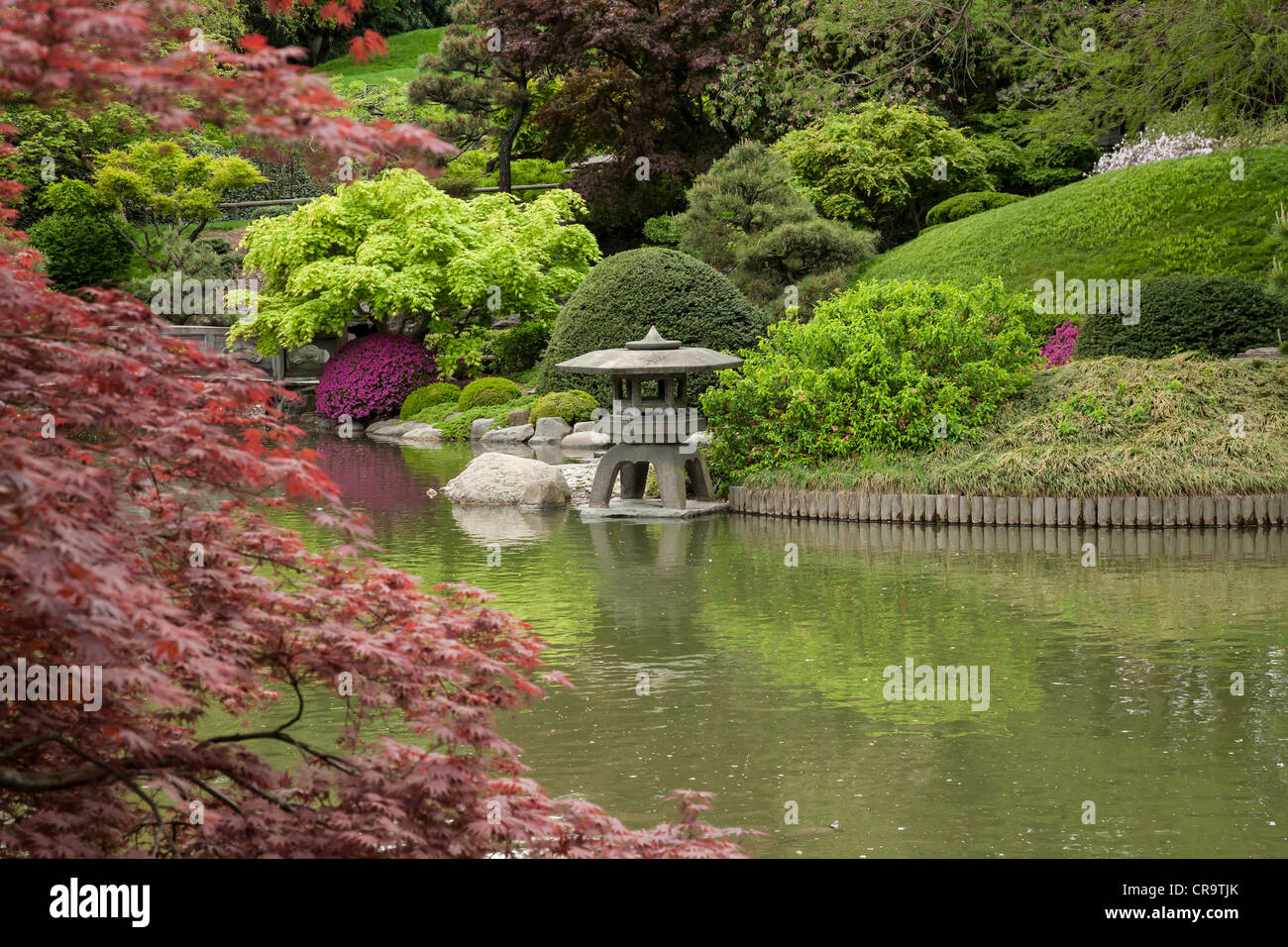 Japanese Hill And Pond Garden In The Brooklyn Botanic Garden Nyc Stock Photo Royalty Free
