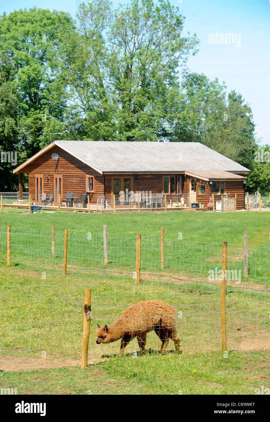 a log cabin or wooden chalet home on an alpaca farm a style of a log cabin or wooden chalet home on an alpaca farm a style of construction