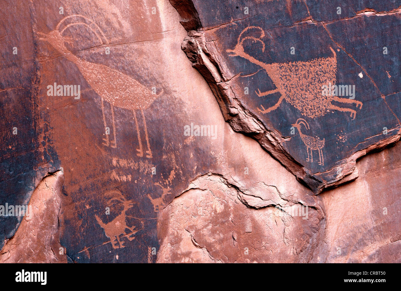Petroglyphs etched in sandstone symbols prehistoric and historic petroglyphs etched in sandstone symbols prehistoric and historic rock art wall drawings by the anasazi native americans biocorpaavc Image collections