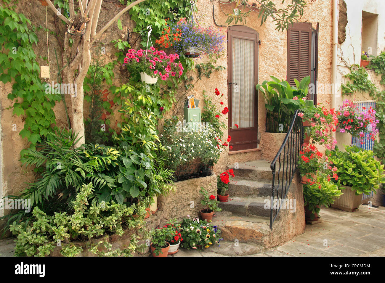 Front Door Decorated With Plants And Flowers France