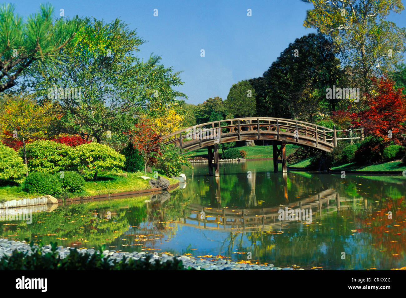 Wooden curved bridge over pond in the missouri botanical - Missouri botanical garden st louis mo ...