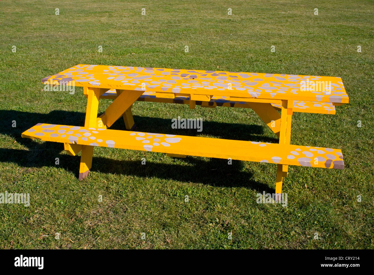 Covered Picnic Tables : Bright yellow picnic table covered with splotches of white