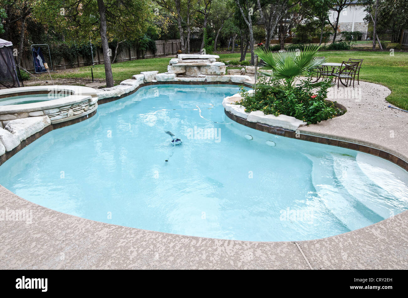 Kidney Shaped Swimming Pool With Hot Tub And Flora And
