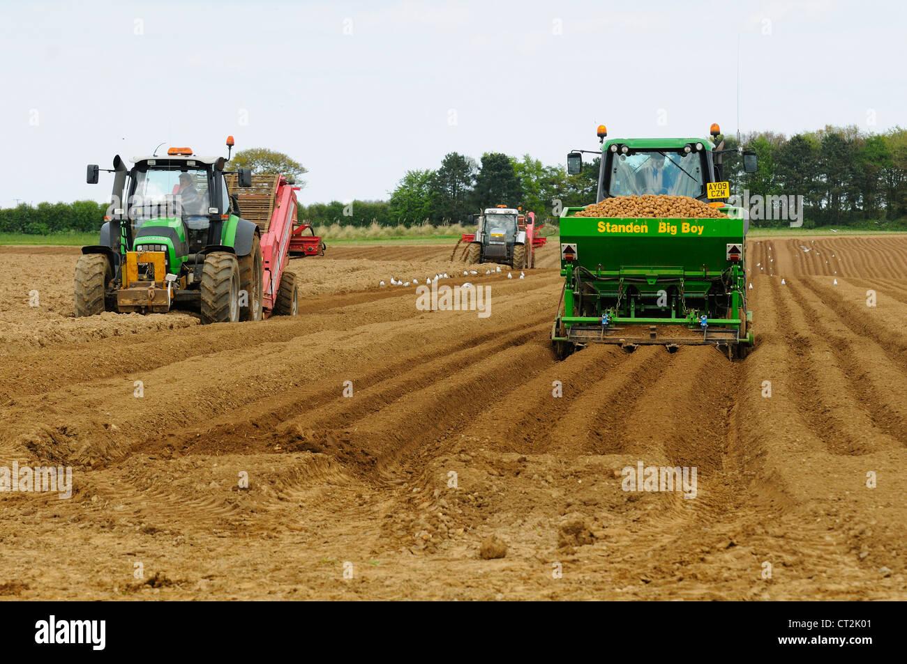 Stock Photo Uk Farming Commercial Potato Growing Tractor With Potato Planter Tractor With Stone Picking Machine On Left Norfolk Uk May