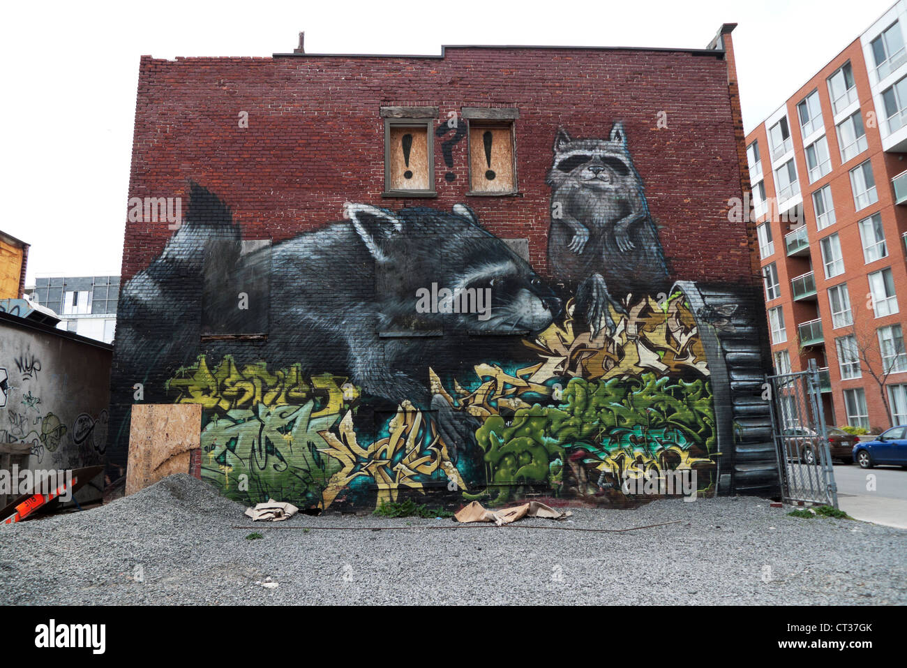 Street art mural on brick wall of raccoons in montreal for Art mural montreal