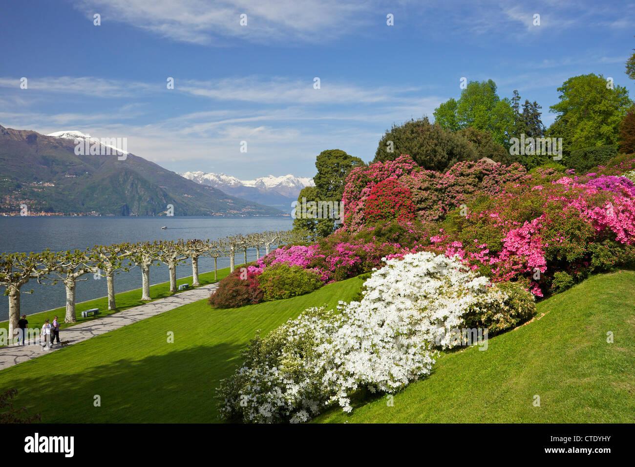 Gardens Of Villa Melzi Bellagio Lake Como Italy Europe