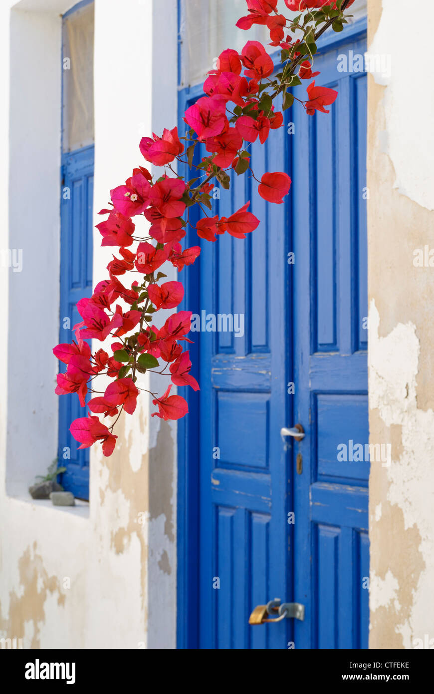 Greek Island detail of a blue door and red bougainvillea in the old Hora of Serifos Island Greece & Greek Island detail of a blue door and red bougainvillea in the ...