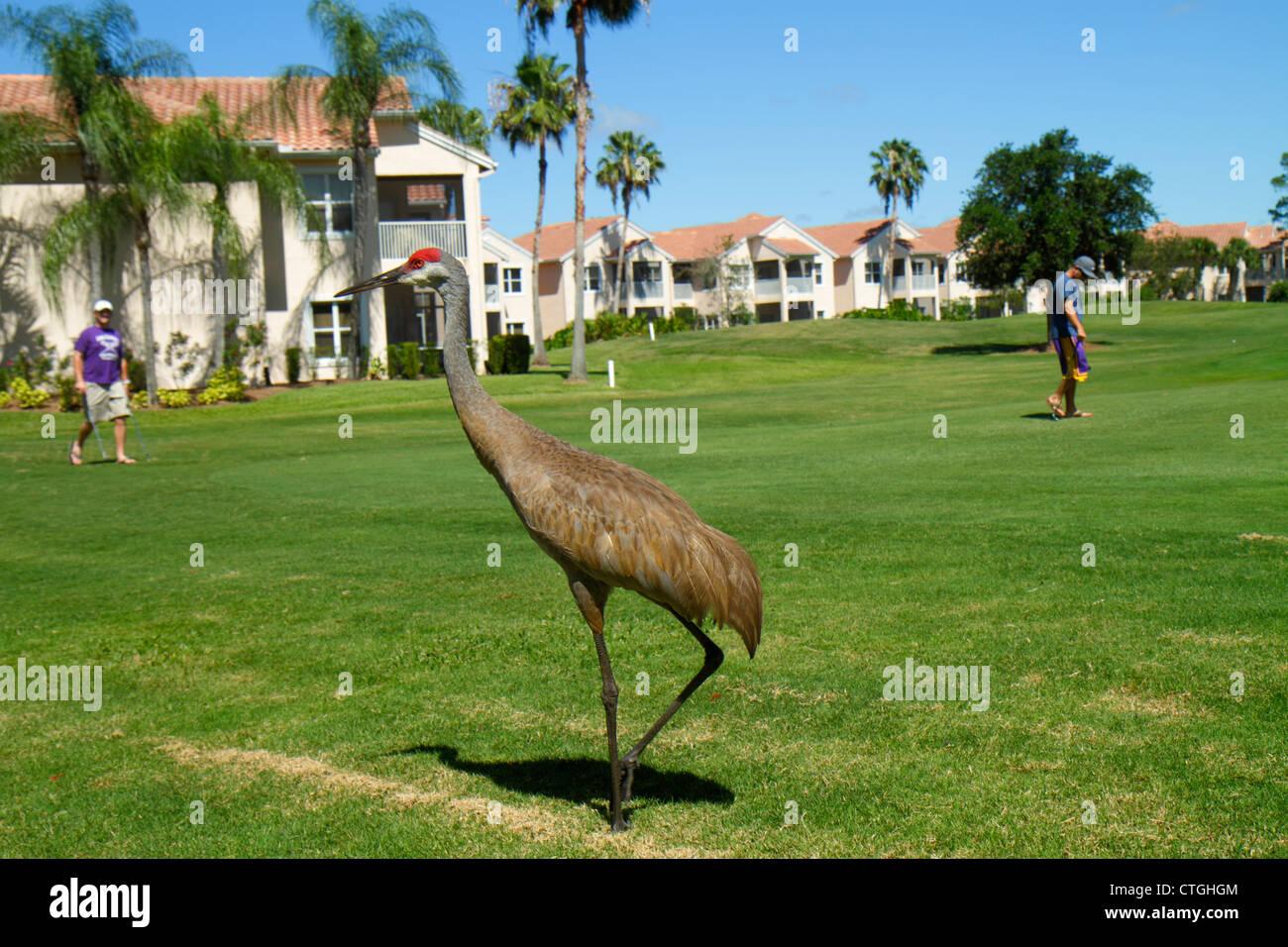 Port St. Lucie Florida Saint PGA Village Pine Valley ...