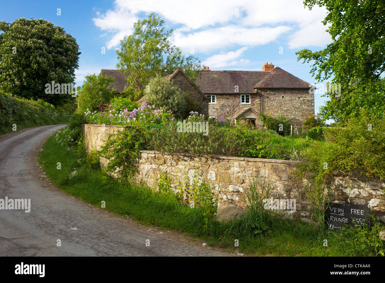Very free range eggs for sale at english farmhouse in Cardington Stock Royalty Free Image