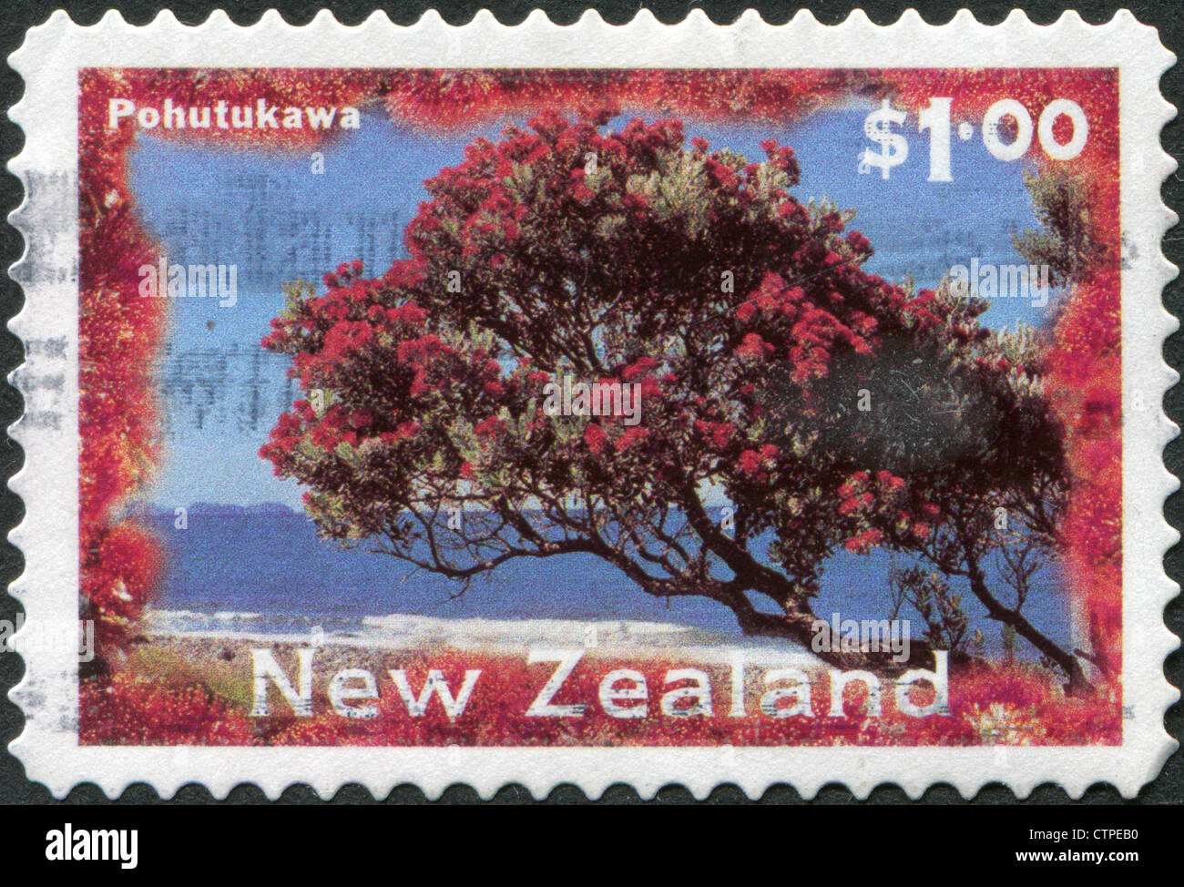 Postage Stamps Printed In New Zealand, Shows A Christmas Tree   Pohutukawa  Tree (Metrosideros Excelsa), Circa 1996