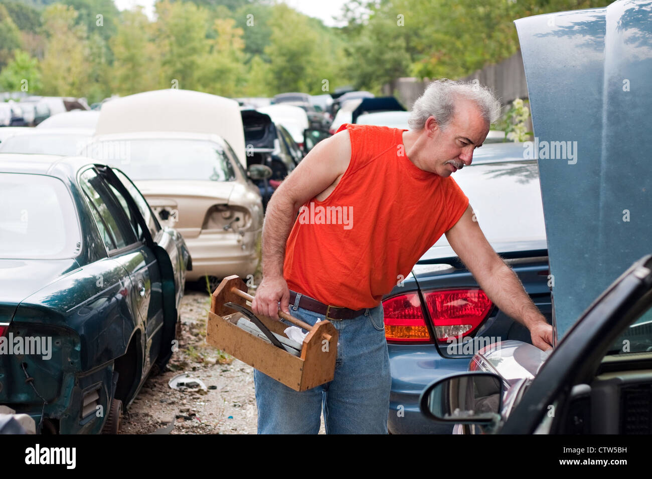 A man browses for car parts on decommissioned used cars at an ...