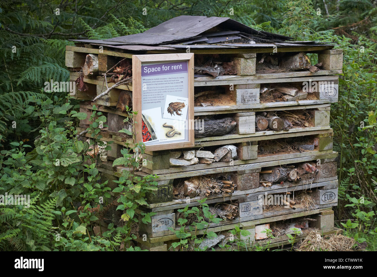 Space for rent - wildlife stack, a wildlife-friendly way to attract ...