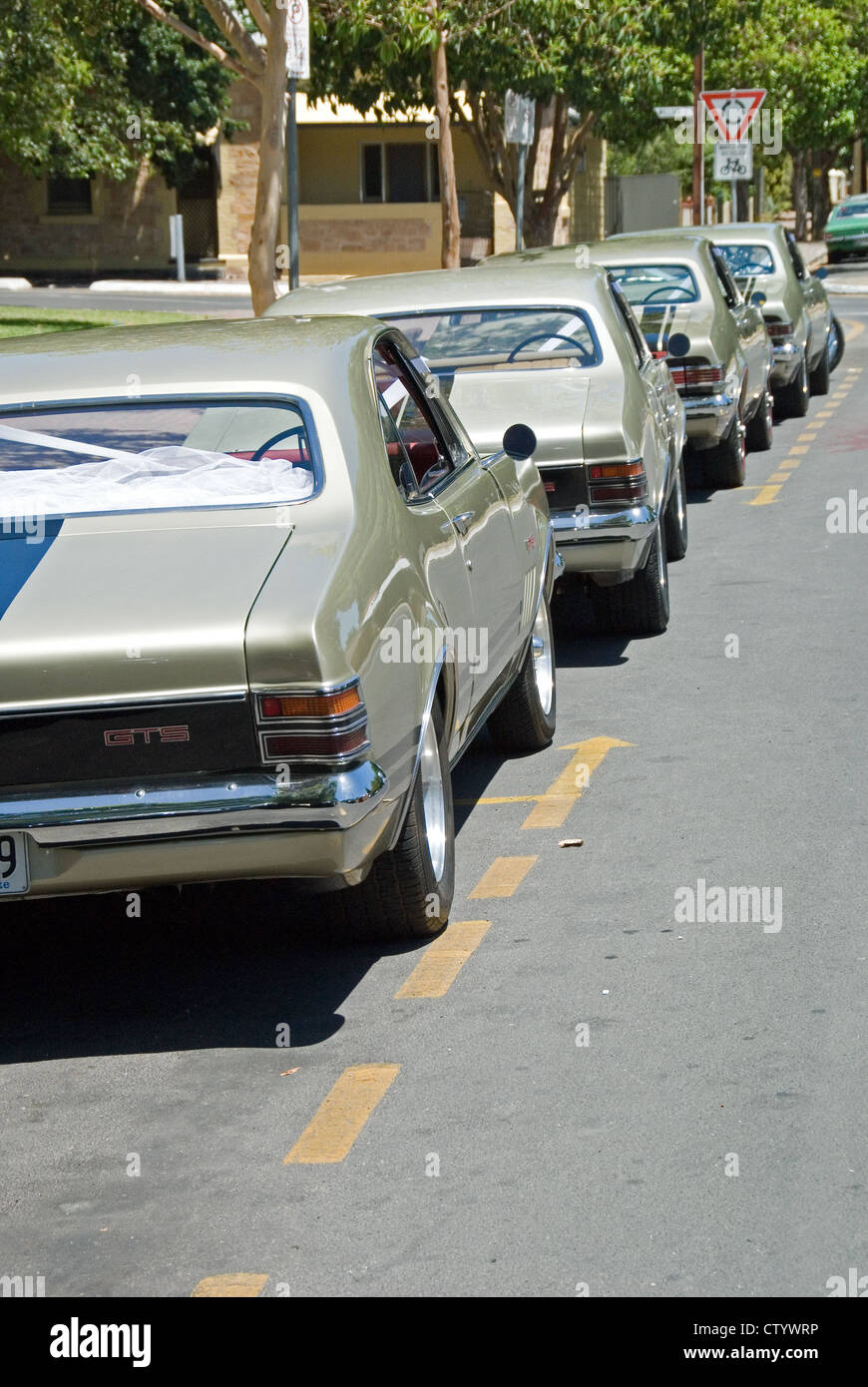 Row Of Holden Monaros Used As A Wedding Cars Adelaide South