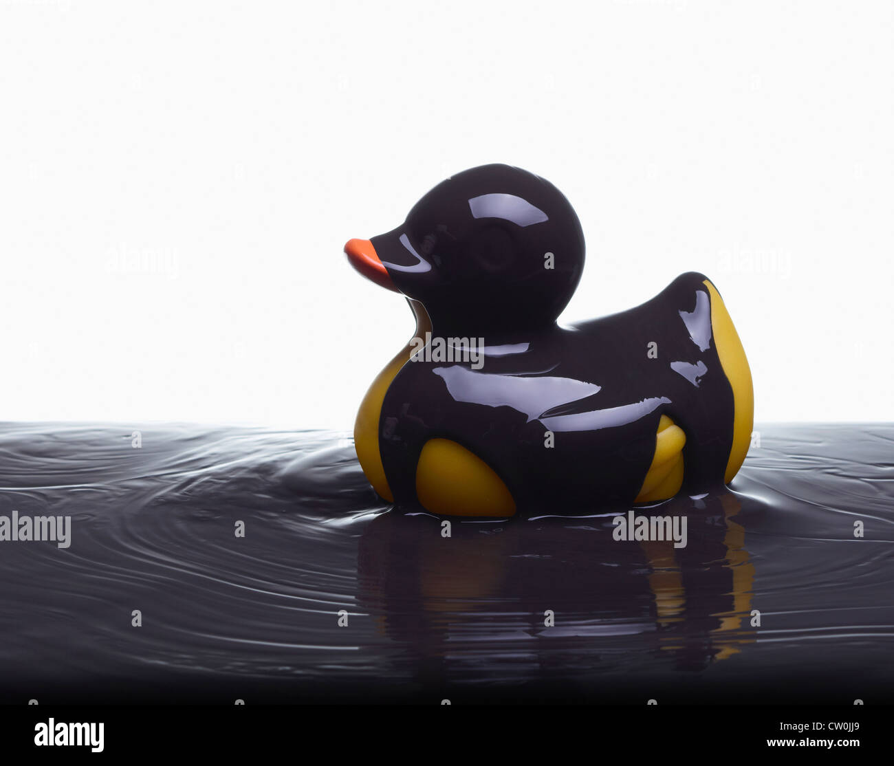rubber duck stock photos u0026 rubber duck stock images alamy