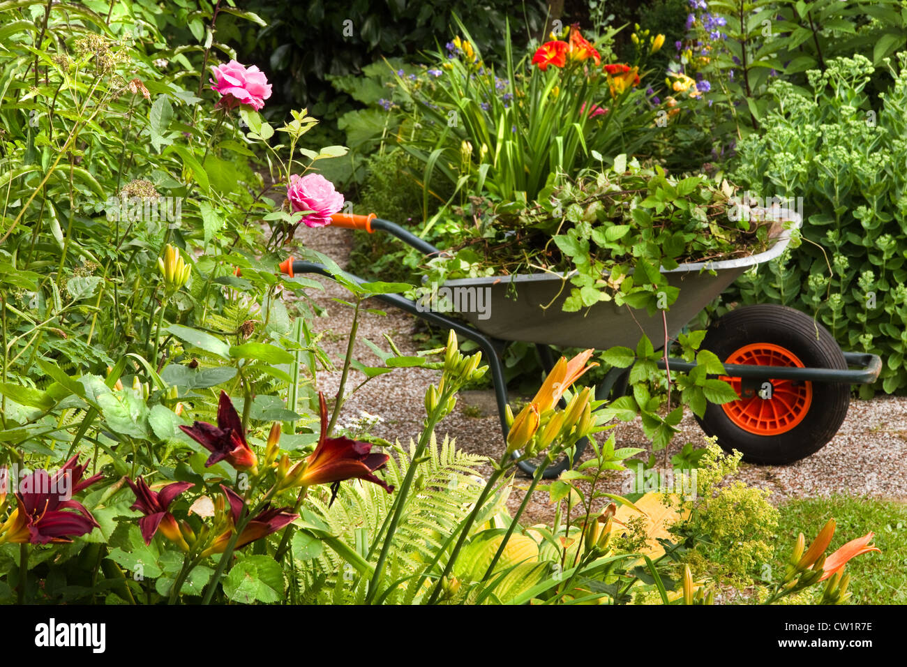 Cleaning Up Summer Garden Full Of Flowers And Wheelbarrow With Garden Waste,  Plants And Weeds   Horizontal