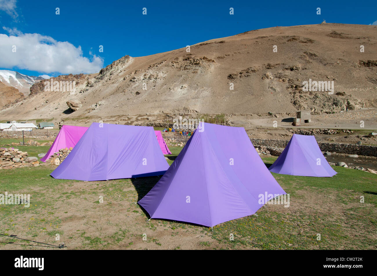 A c&site of pink and purple tents on a grassy field near Korzok village in Ladakh India & A campsite of pink and purple tents on a grassy field near Korzok ...