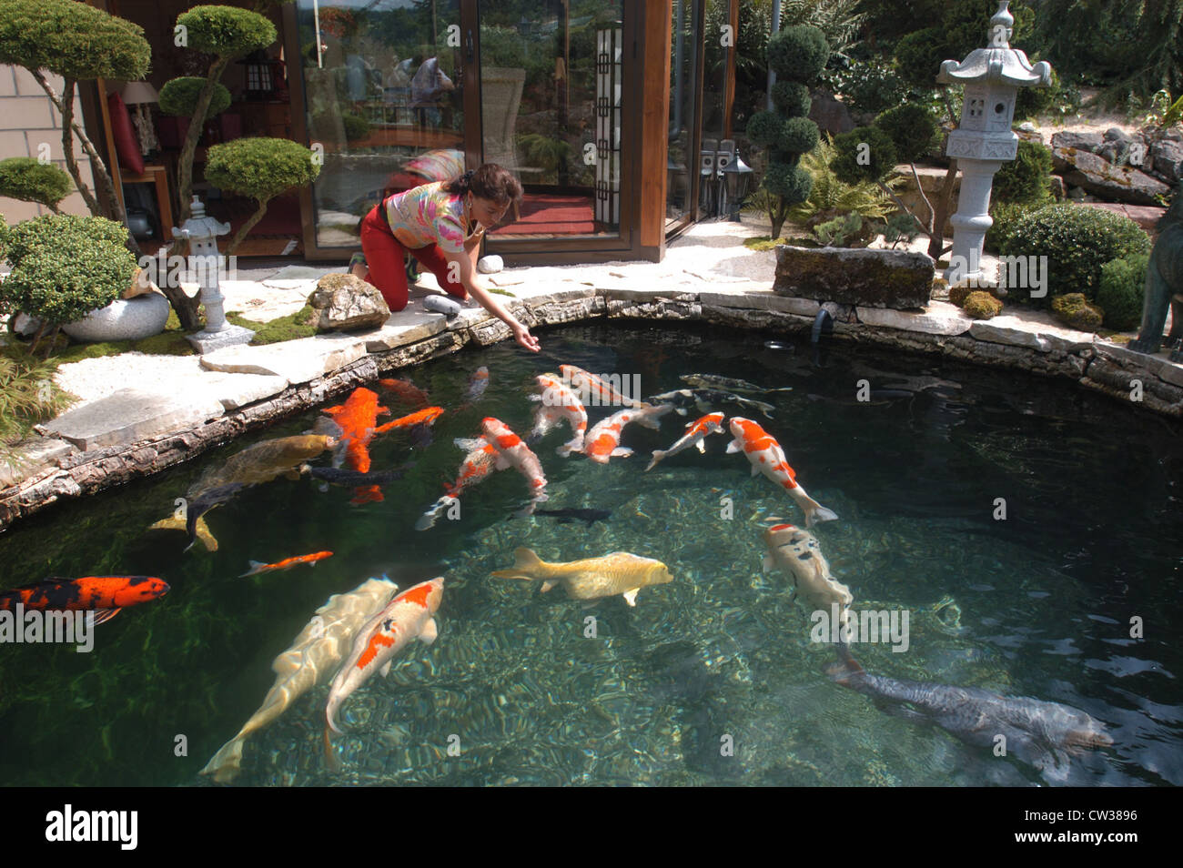 Koi pond in reigoldswil switzerland stock photo royalty for Ornamental fish pond maintenance