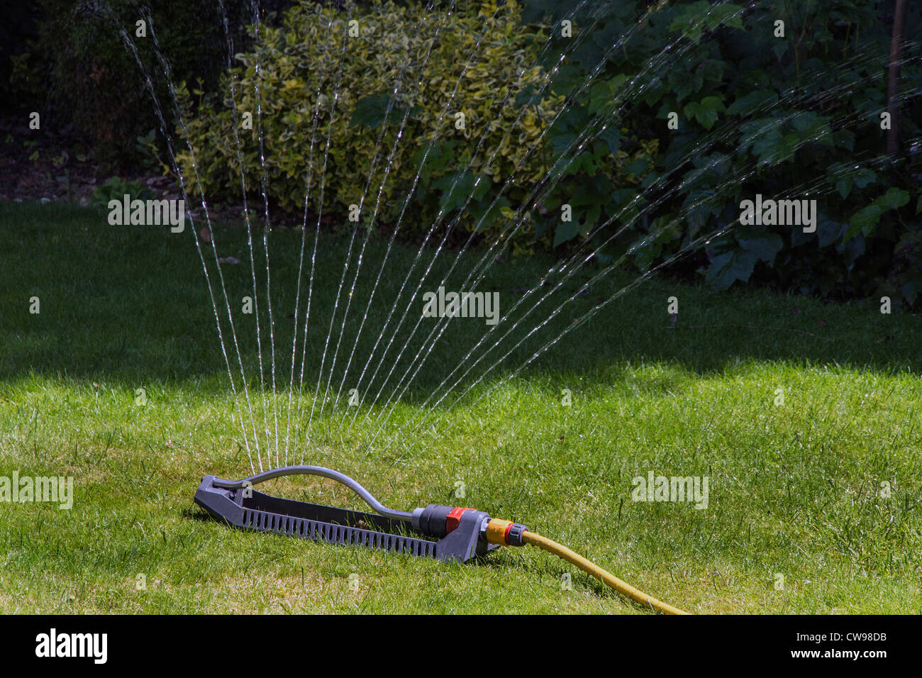 Garden Sprinkler watering lawn Stock Photo Royalty Free Image