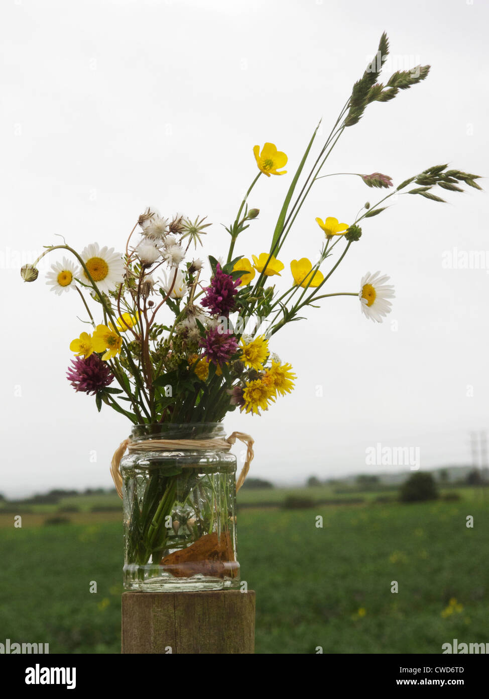 Flowers by post vase - Jam Jar Of Wild Flowers On A Fence Post In Farmland Stock Image