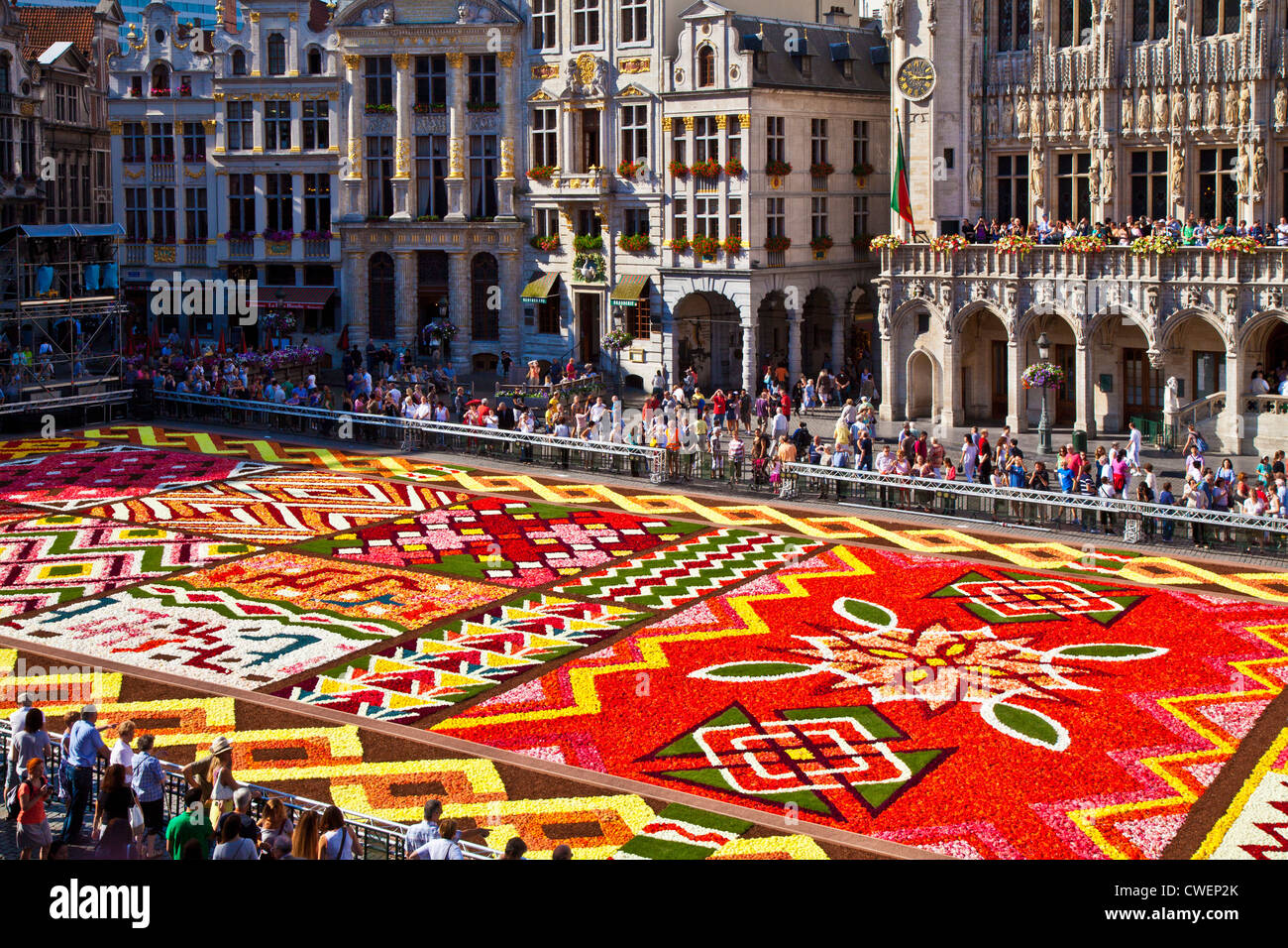 2012 flower carpet tapis de fleurs in the grand place grote markt stock photo royalty free. Black Bedroom Furniture Sets. Home Design Ideas