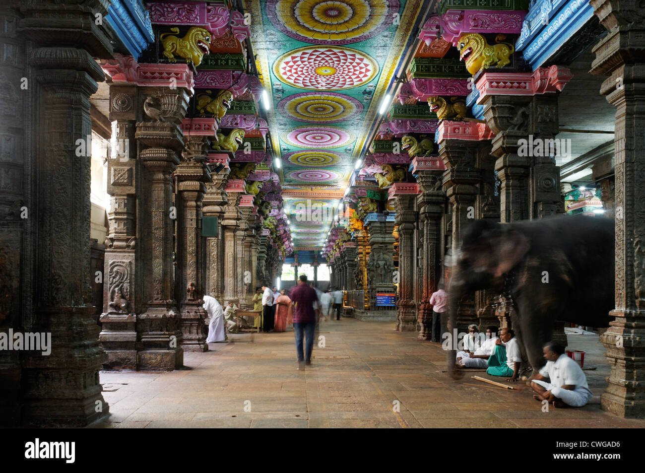 Inside Meenakshi Temple in Madurai South India Stock Photo ...