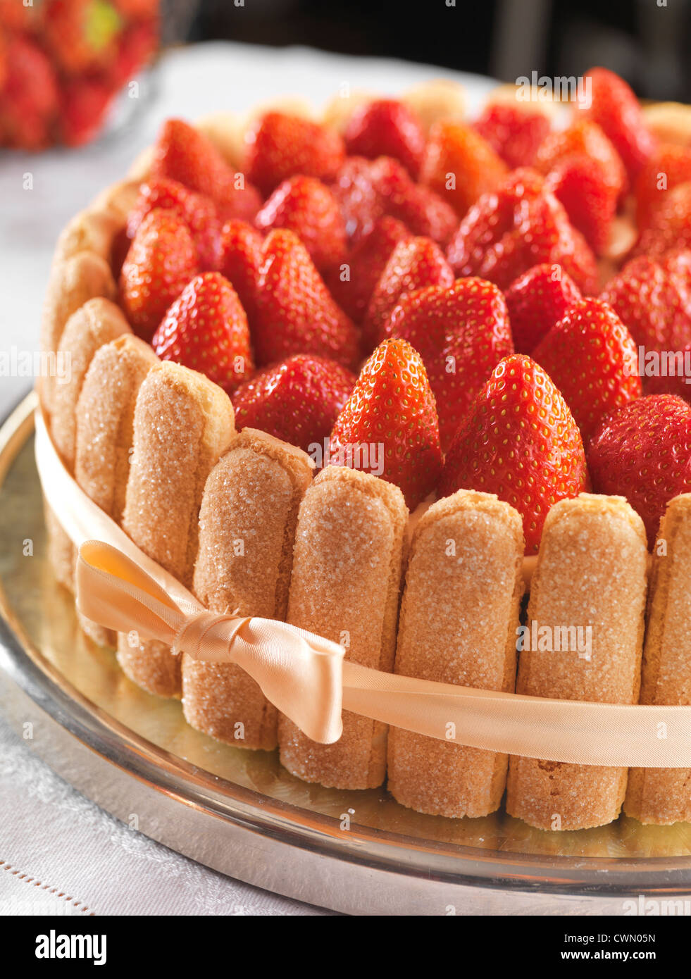 Cake with Strawberries, Charlotte Malakoff Stock Photo ...