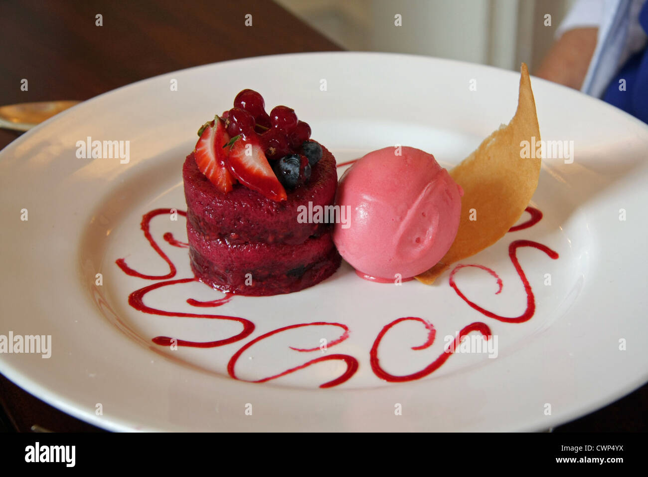Plate of fancy restaurant food nouvelle cuisine stock photo royalty free image 50273998 alamy for Nouvelle cuisine
