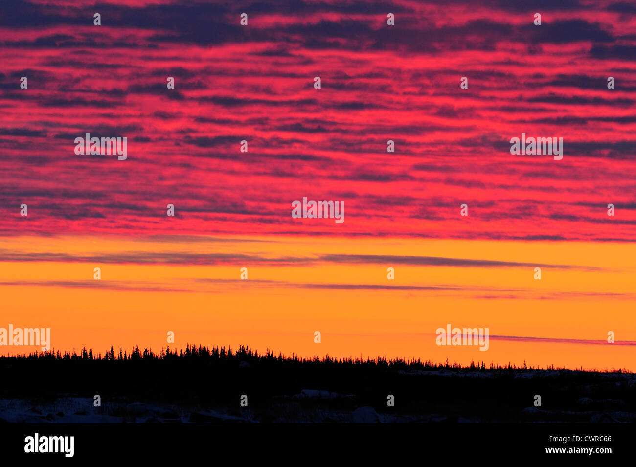 Sunset over hudson bay lowlands in early winter seal river sunset over hudson bay lowlands in early winter seal river heritage lodge churchill manitoba canada buycottarizona Choice Image