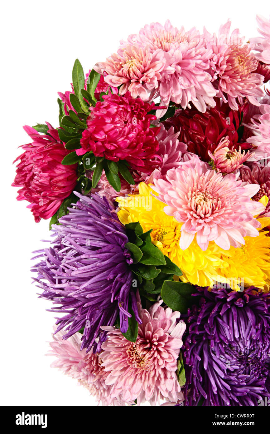 Flowers Bouquet Of Chrysanthemums And Asters Isolated On White