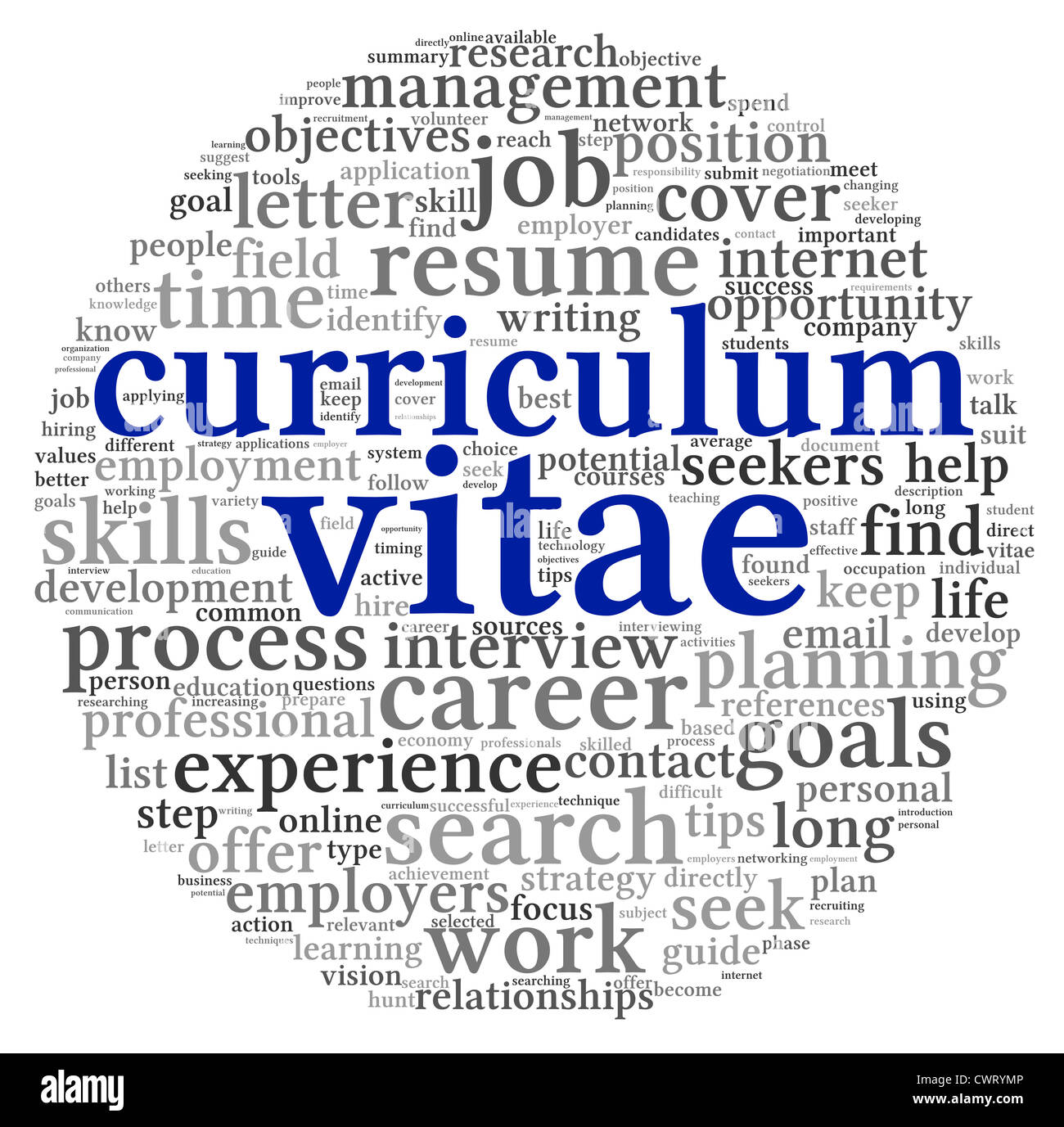 curriculum vitae cv concept in word tag cloud on white background curriculum vitae cv concept in word tag cloud on white background