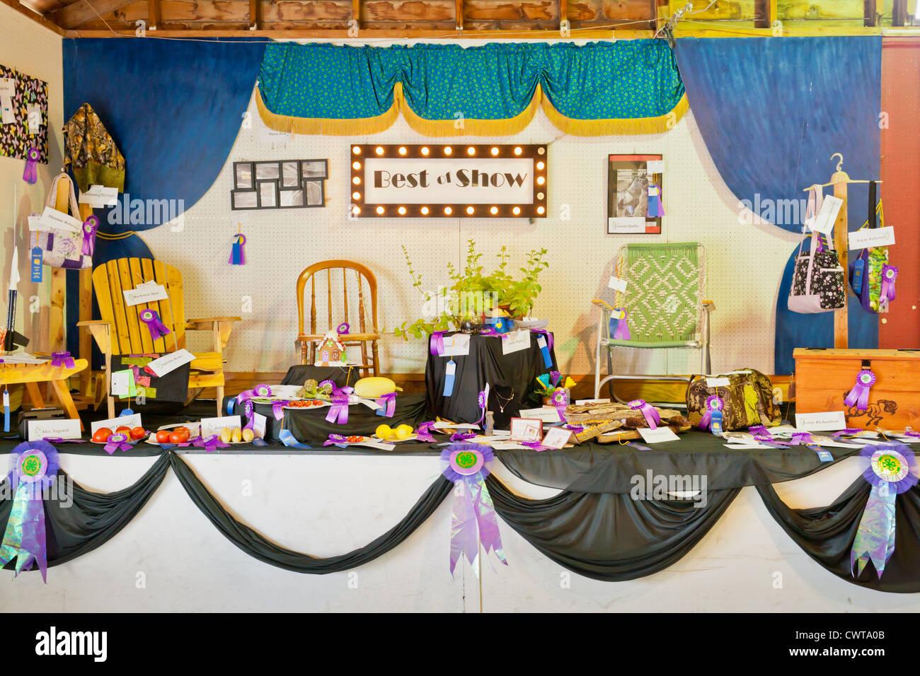 New york montgomery county fonda - Best Of Show 4h Club Display Fonda Fair Montgomery County New York State