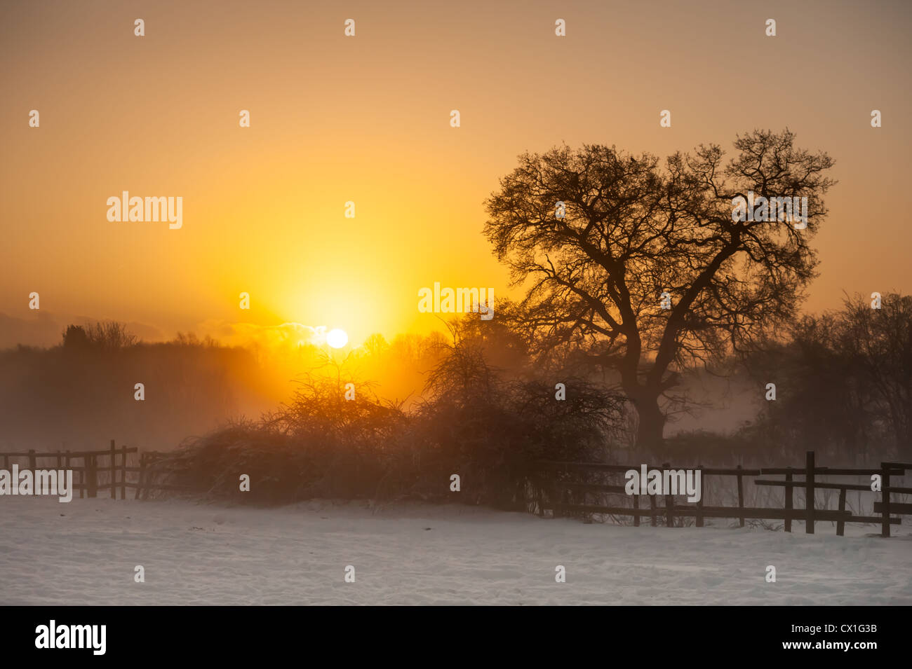A_Winter_sunrise_over_a_snowy_misty_Brit