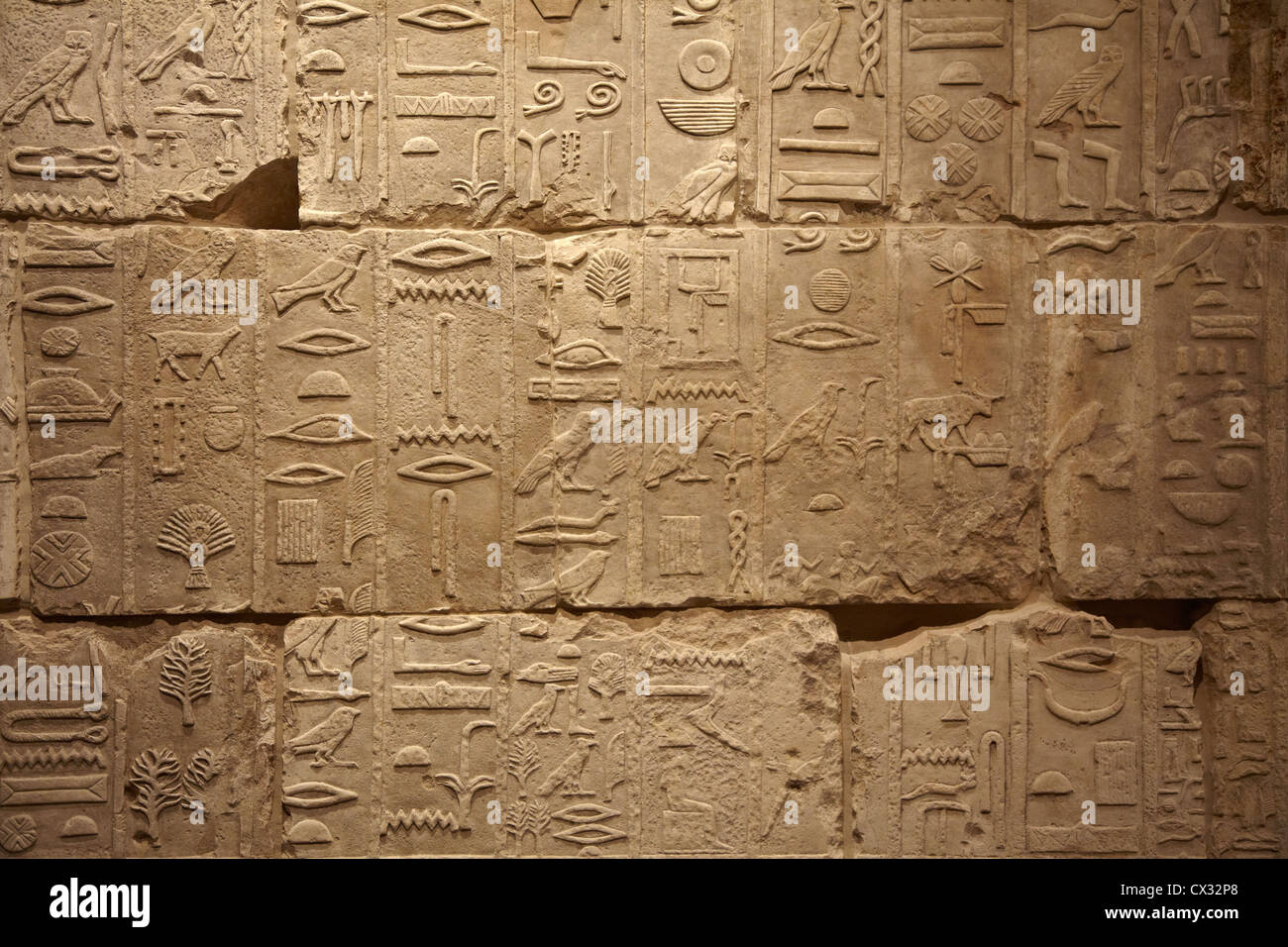 Ancient Egypt - Map, Religion, gods, Government, Clothing, Food ...