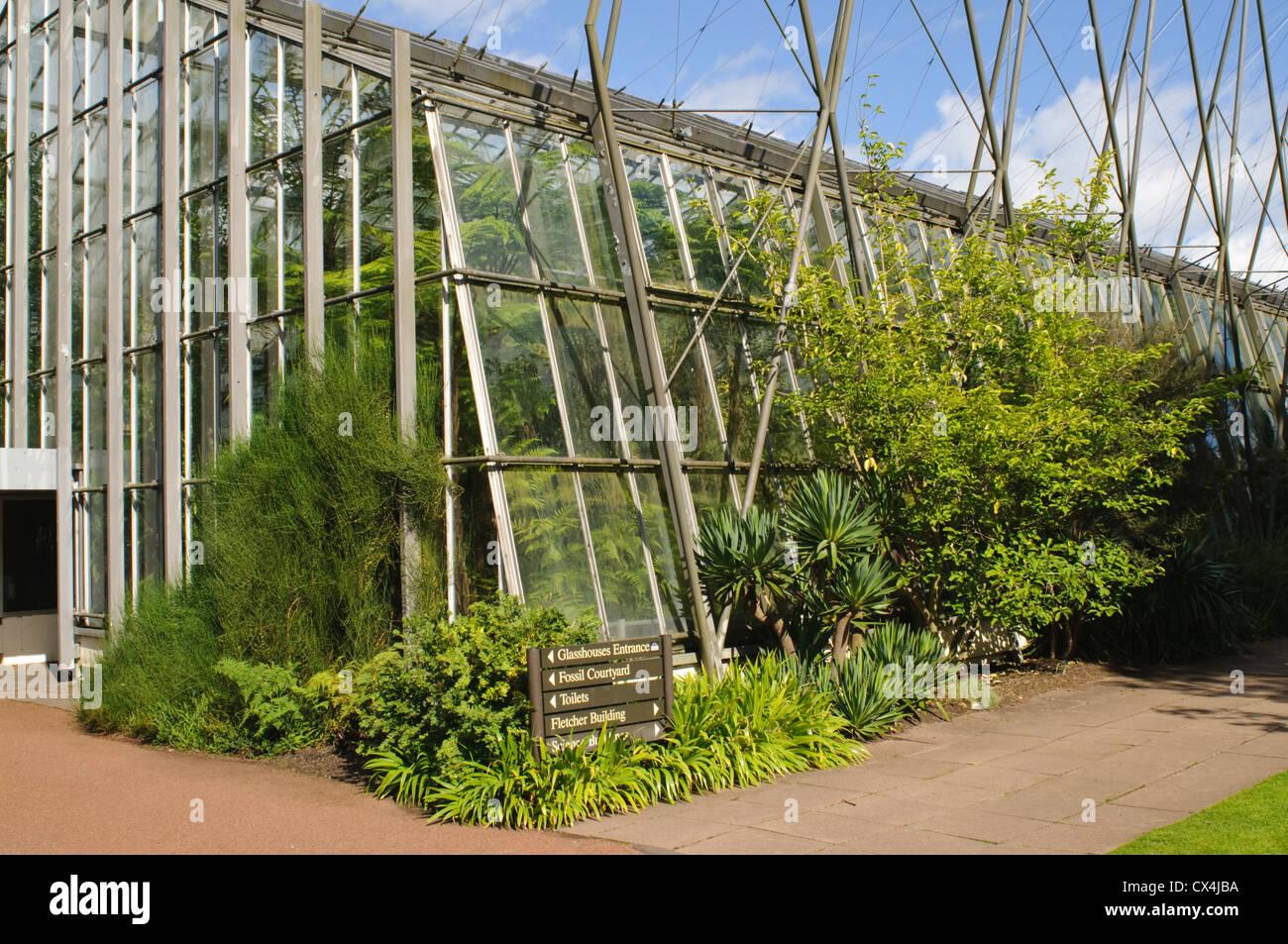 Royal Botanic Garden Edinburgh Glasshouse Stock Photo Royalty Free Image 50504030 Alamy