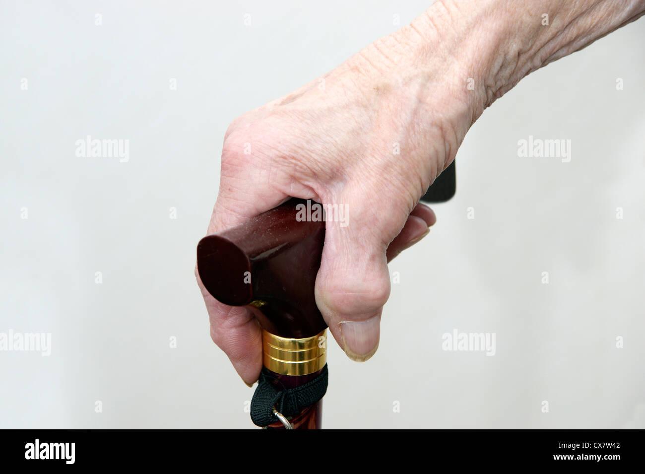 Hand Holding Stick ~ Elderly woman s hand holding a walking stick stock photo