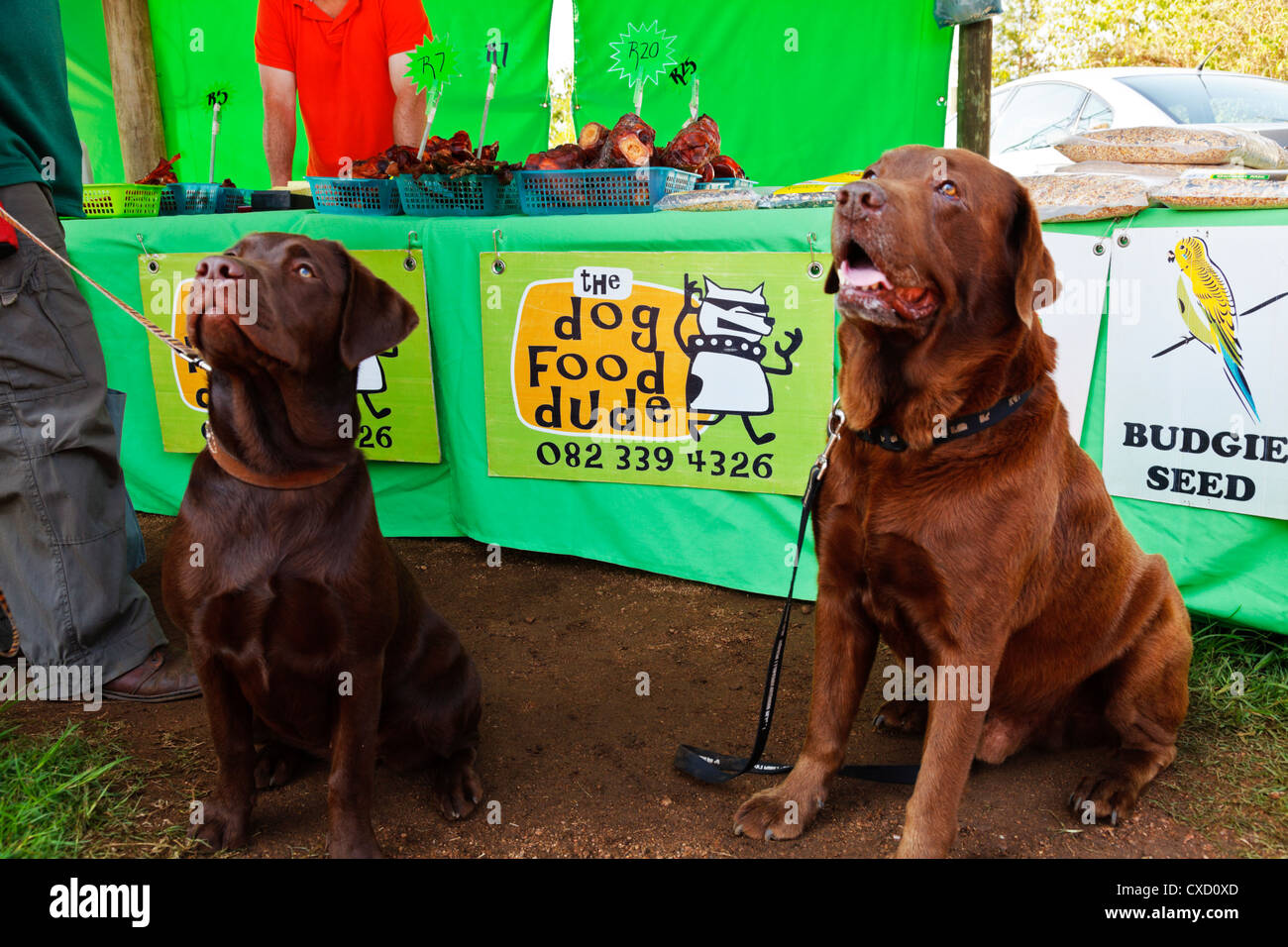 Farmers Market Dog Food Pack