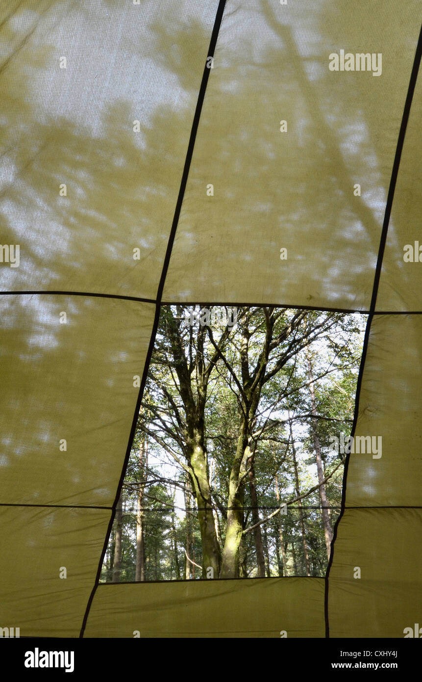 Parachute canopy used as a shelter showing foliage outside. Focus in on parachute material & Parachute canopy used as a shelter showing foliage outside. Focus ...