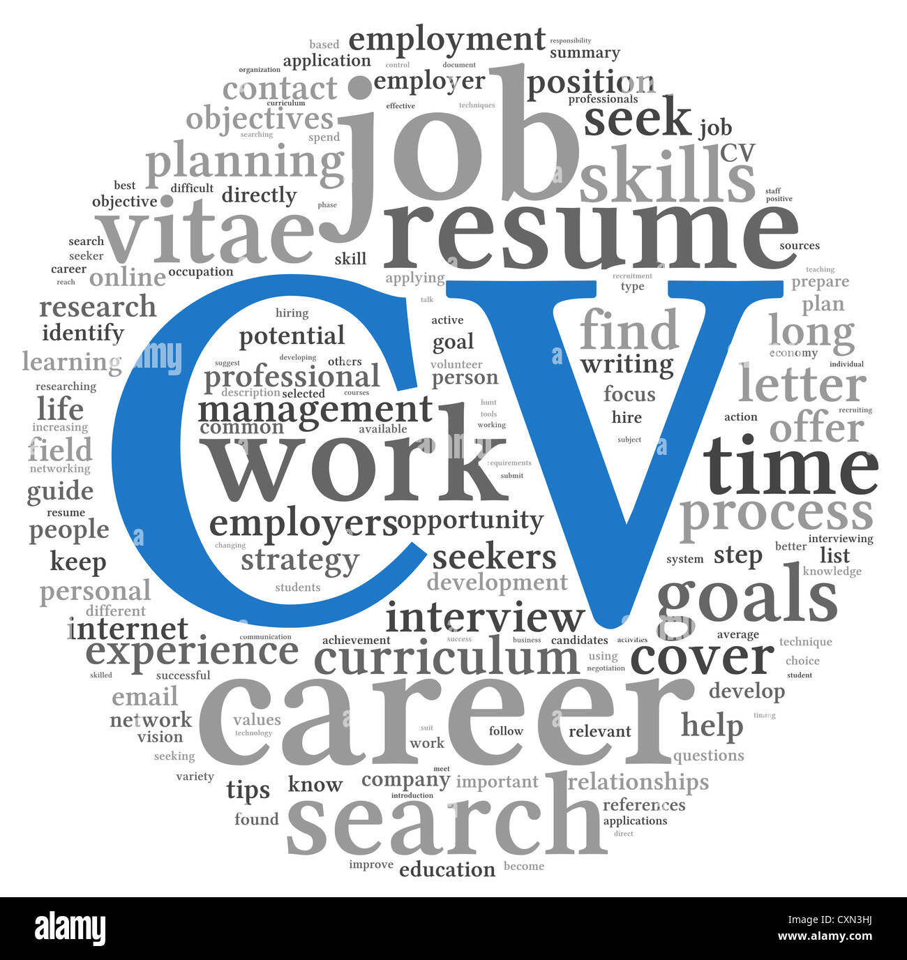 Cv Curriculum Vitae Concept In Word Tag Cloud On White Background