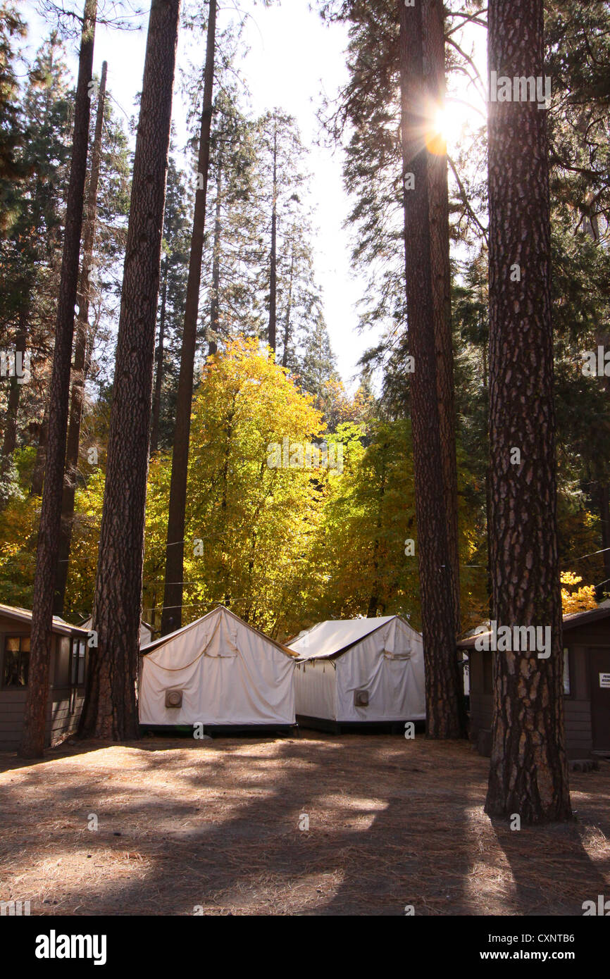 Curry village tent cabins in the C& Curry part of Yosemite National Park. The site of the deadly Hantavirus outbreak & Curry village tent cabins in the Camp Curry part of Yosemite ...