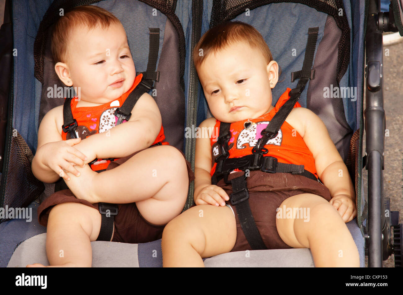 twin baby hispanic latino boys babies portrait headshot