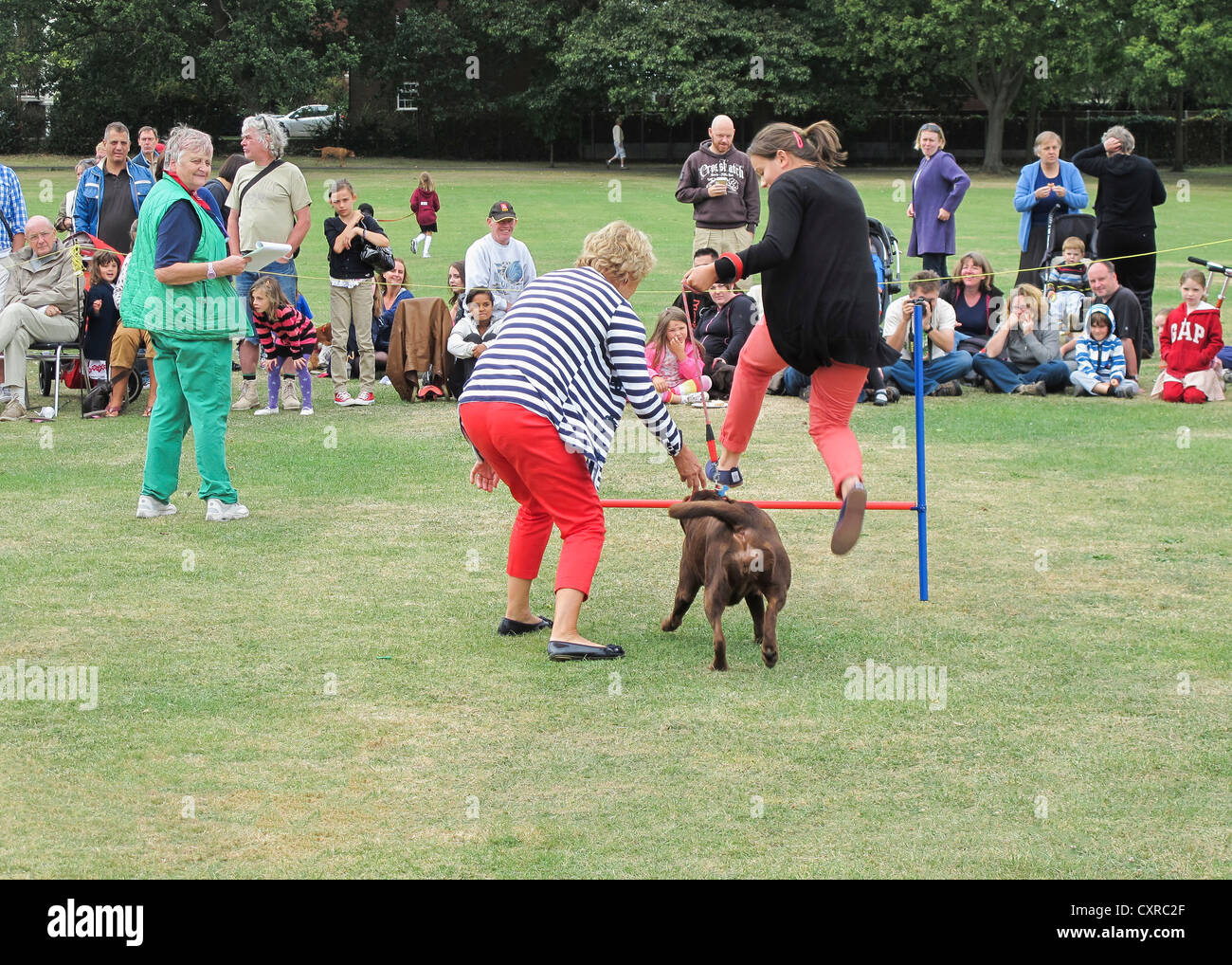 Dog Park Middlesex