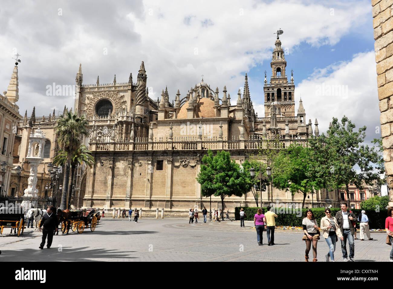 Seville Cathedral, Catedral de Santa Maria de la Sede, La Giralda Stock Photo...