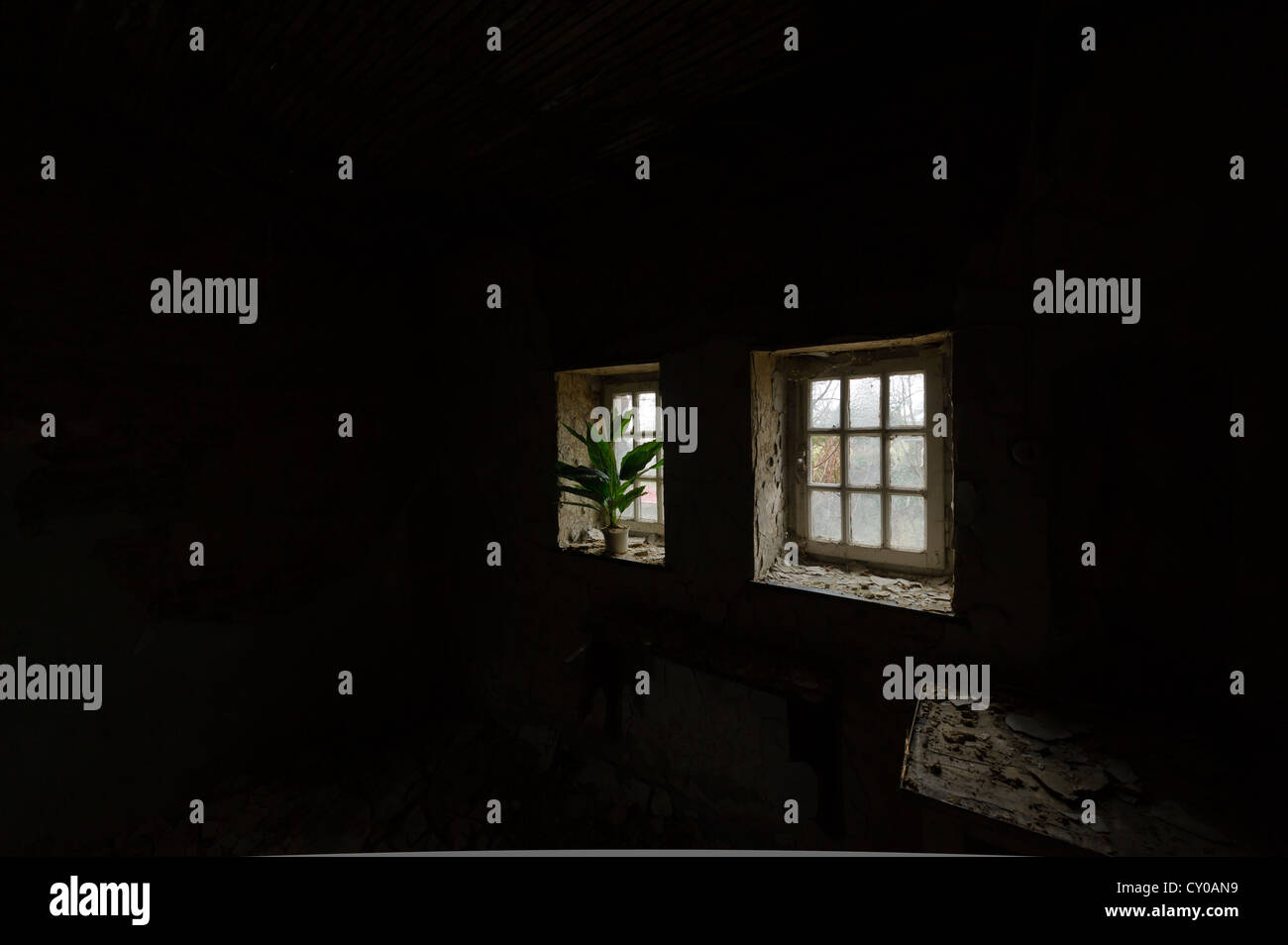 Dark empty room with window - Stock Photo Empty Dark Room With A Plant And Small Windows