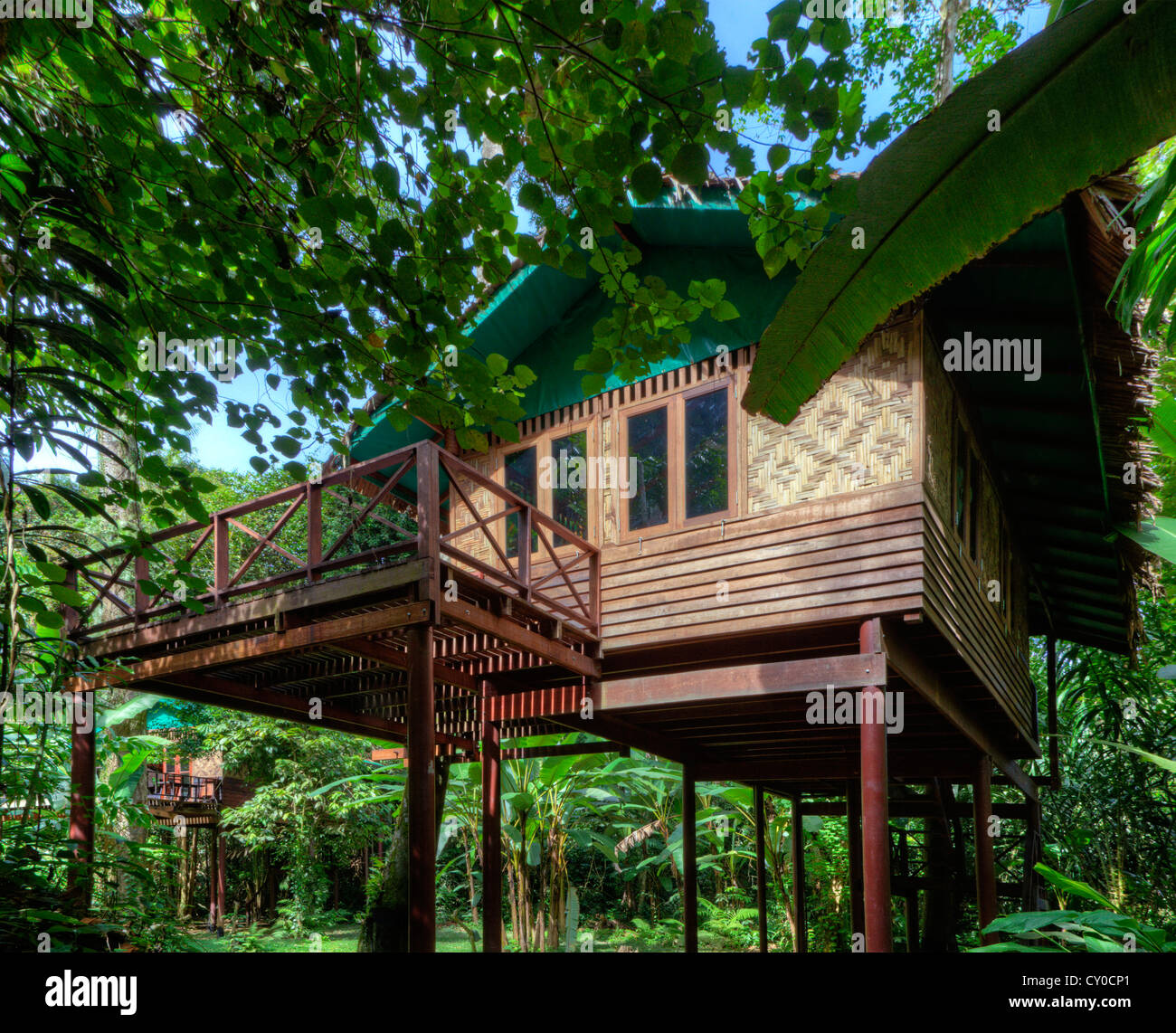 Uncategorized Houses In The Jungle tree houses are the specialty of our jungle house khao sok national park surathani provence thailand