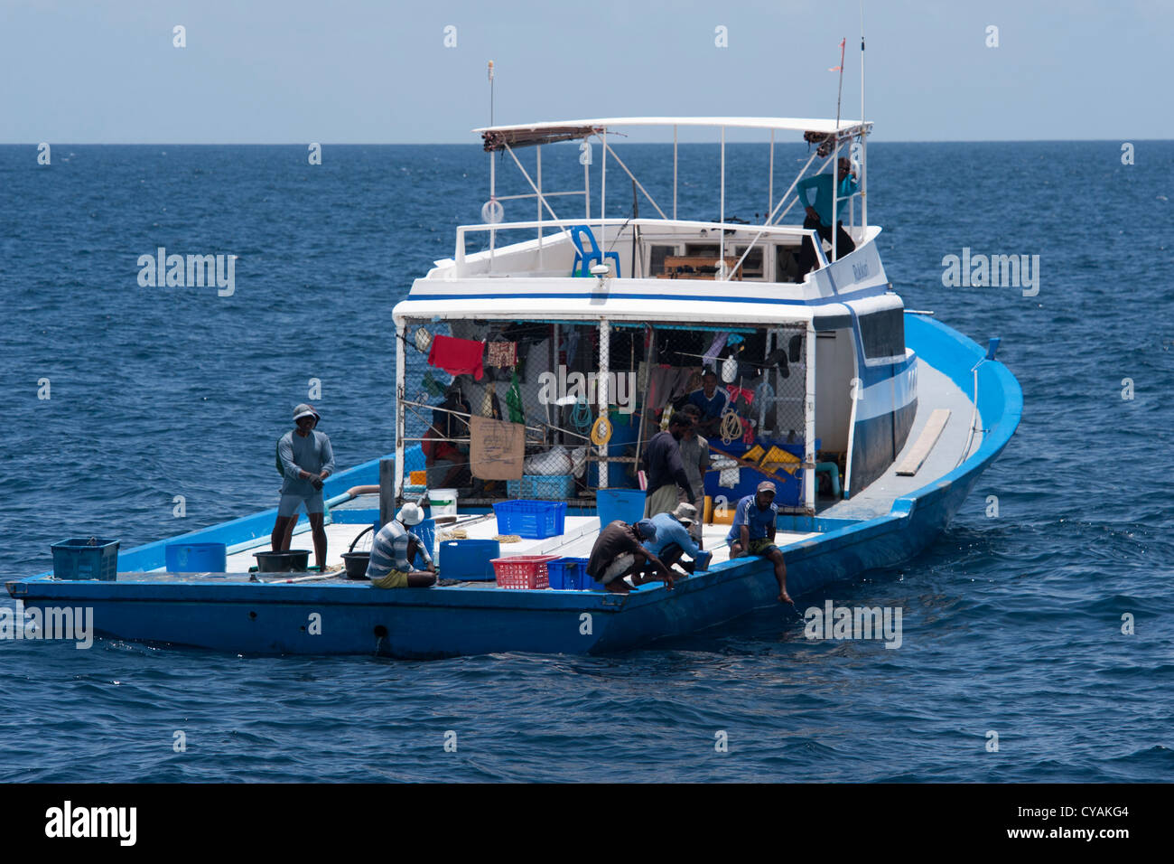 Maldivian tuna fishing boat with pantropical spotted for Tuna fishing boats