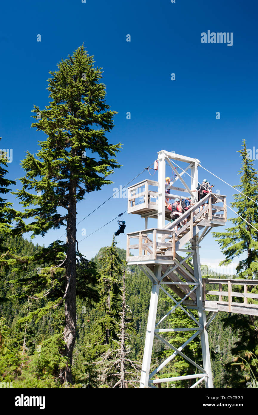 Zipline With People Lined Up On The Platform Waiting Their Turn One Person Starting Grouse Mountain North Vancouver BC