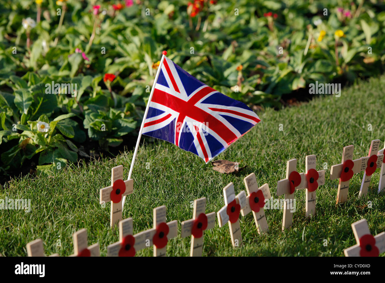 a row of crosses and poppies in the grass with a union jack flag