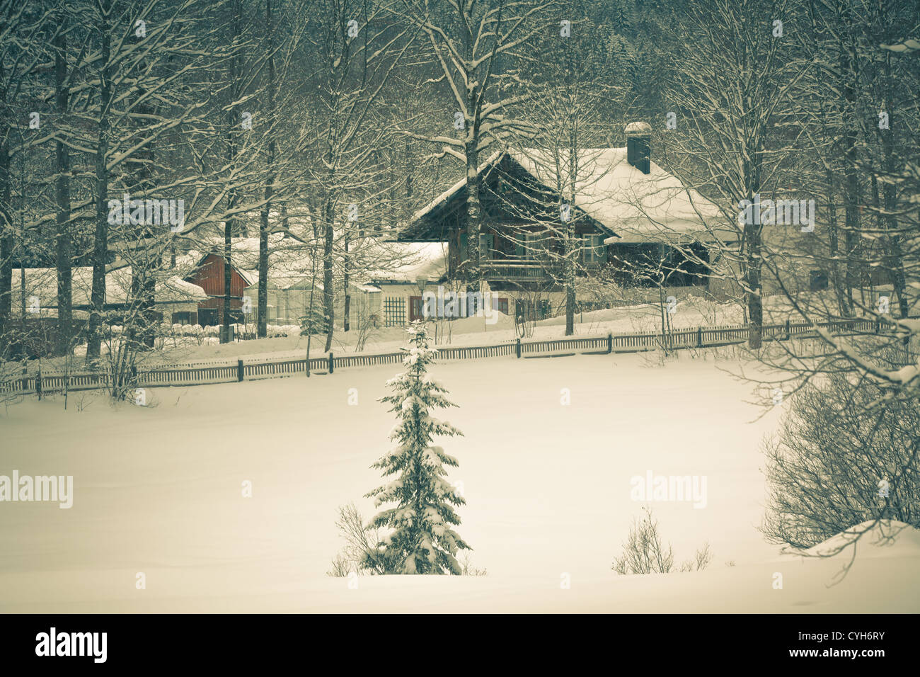 White landscape: snowy Alpine house in the woods. Toned and ...